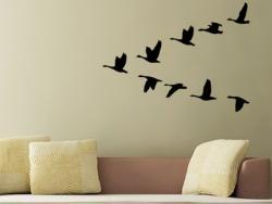 Zugvögel M