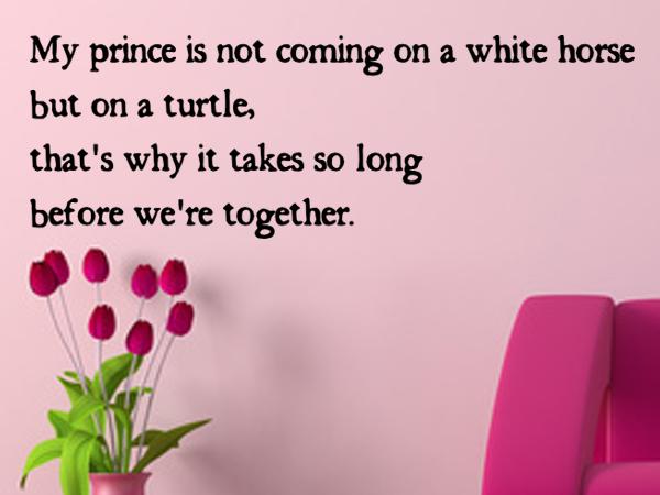 Prince on a turtle