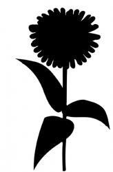 Gänseblümchen XL